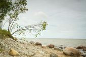 foto of hot-weather  - Sea coast in the spring in hot weather - JPG