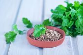 picture of garam masala  - coriander in bowl and on a table - JPG