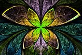 pic of symmetrical  - Multicolored symmetrical fractal pattern as flower or butterfly in stained - JPG