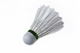 stock photo of game-cock  - Shutter cock single object in clean background - JPG
