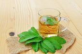 stock photo of mints  - Cup of fresh mint tea in glass mug and mint leaves - JPG