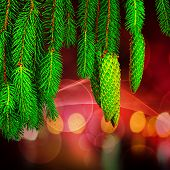 stock photo of pine cone  - Pine cone and branches against soft defocused background - JPG