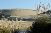 foto of quicksand  - Landscape of Te Paki sand dunes in Northland New Zealand. ** Note: Shallow depth of field - JPG