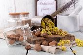 pic of roughage  - Dried herbs with nutmeg on table close up - JPG