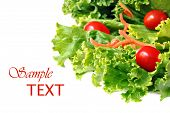 Fresh green lettuce salad with shredded carrots and grape tomatoes on white background with copy spa
