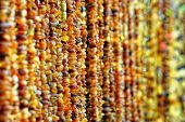 ropes of amber