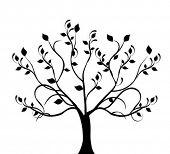 Постер, плакат: дерево силуэт