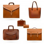 vector leather bags