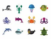Aqua Icons Set. Vector Icons Of Dolphin, Turtle, Sea Lion And Other Sea Creatures poster