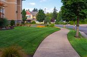 House Frontyard And Parking Strip Freshly Mowed Green Grass Lawn In North American Suburban Neighbor poster