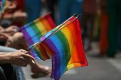 image of gey  - picture of hands holding rainbow flags in the pride parade the closest hand holding a cigarette