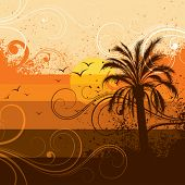 Постер, плакат: Дерево пальмы
