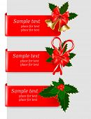 foto of polly  - Set of winter christmas banners - JPG