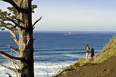 Ecola State Park, And The Tilamook Light House, Oregon Coast