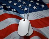Dog Tags On Us Flag