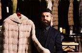 Guy Holds Beige Furry Coat In Shop With Fur On Background. Man With Beard And Mustache Holds Fur Coa poster