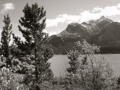 Black And White Mountain Scene