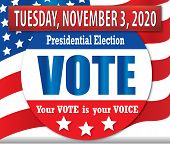 Vote In The 2020 Presidential Election Your Vote Is Your Voice poster