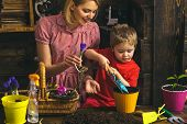 Gardening Concept. Little Child Help Mother Planting Flower In Pot With Gardening Tool. Organic Gard poster