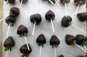 chocolate dipped strawberries. Delicious Chocolate Dipped Strawberries for sale in a deli case at a  poster