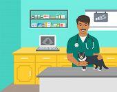 Veterinarian Doctor Holds Dog On Examination Table In Vet Clinic. Vector Cartoon Illustration. Pets  poster
