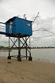 Classic Blue Oyster Hut