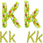 Vector Font Type Letter K Made From Flower Tulip