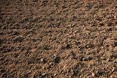 suelos agrícolas