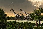 foto of behemoth  - Three Brachiosaurus dinosaurs walk through a forested area while three Pterosaurs fly overhead - JPG