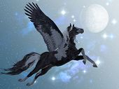 stock photo of pegasus  - A beautiful black and white Pegasus flies up into the sky on long feathered wings - JPG