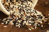 image of millet  - Organic Dry Multi Grain Rice against a background - JPG