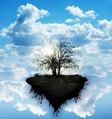 stock photo of fantasy world  - tree of life symbol of our mother nature - JPG