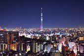 Skyline of Tokyo, Japan at Tokyo Tower.