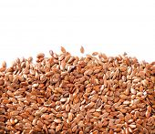 Linseed. Flaxseed border isolated on White Background. Flax seeds