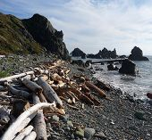 Stacked Driftwood On A Rocky  Pebble Coast