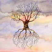 Tree Against The Sky