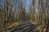 picture of marlboro  - A portion of the 22 mile long Henry Hudson Trail for bicycles and hikers as it passes through Marlboro New Jersey - JPG