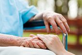 stock photo of grandmother  - Young doctor hands holding the elderly lady - JPG