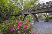 stock photo of arch foot  - Arch Wooden Foot Bridge at Crystal Springs Rhododendron Garden with Azaleas Blooming in the Foreground - JPG