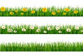Three nature backgrounds of green grass with dandelions and daisies. Vector.