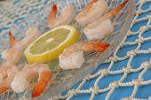 Boiled Lousiana Shrimp Serving