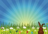 image of easter bunnies  - Easter bunny on green meadow with easter eggs and flowers - JPG