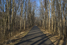 stock photo of marlboro  - A portion of the 22 mile long Henry Hudson Trail for bicycles and hikers as it passes through Marlboro New Jersey - JPG