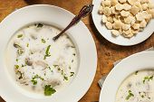 Homemade Organic Oyster Stew Appetizer