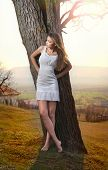 Pretty young woman posing near a tree. Very attractive blonde girl with white short dress outdoor
