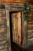 Cabin Door At Christmas