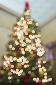 Christmas Tree Perspective Defocused With Bokeh Lights