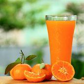 Group Of Orange And Juice