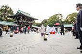 Tokyo,japan-nov 20 :a Japanese Wedding Ceremony At Shrine