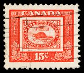 CANADA - CIRCA 1951: A stamp printed in Canada issued for the centenary of First Canadian Postage Stamp shows reproduction of first Canadian stamp of 1851 (beaver), circa 1951.